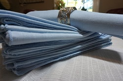 Set of 12 Blue Napkins