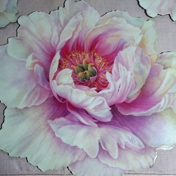 Pink Peony Placemats